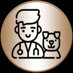 Veterinari Ghidul de Chiajna
